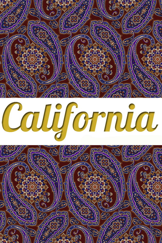 Леггинсы Калифорния California Paisley Idea
